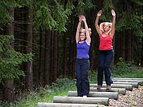 Kraft und Koordinationstraining auf dem Fitnessparcours Bad Fredeburg / Sauerland - Station Seitsprünge